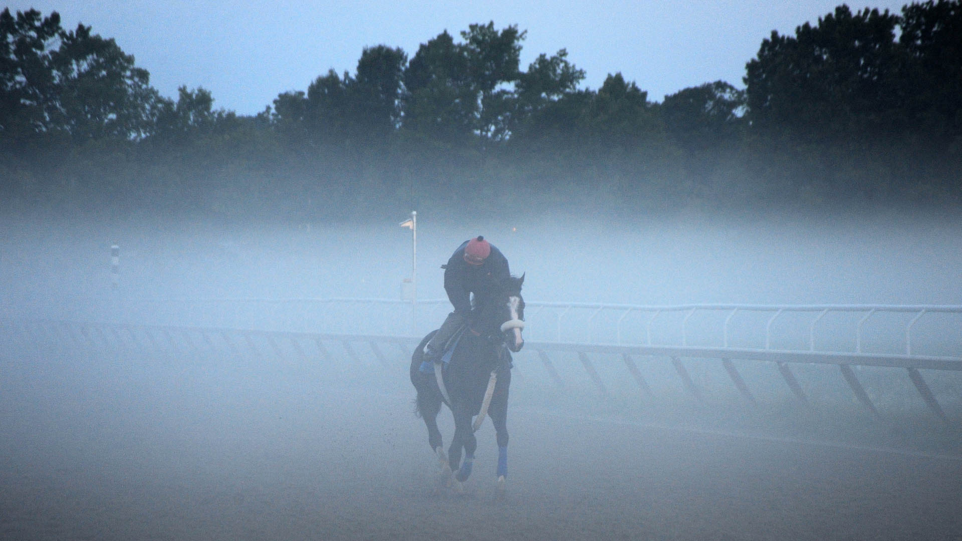 Securitiz gallops at Saratoga