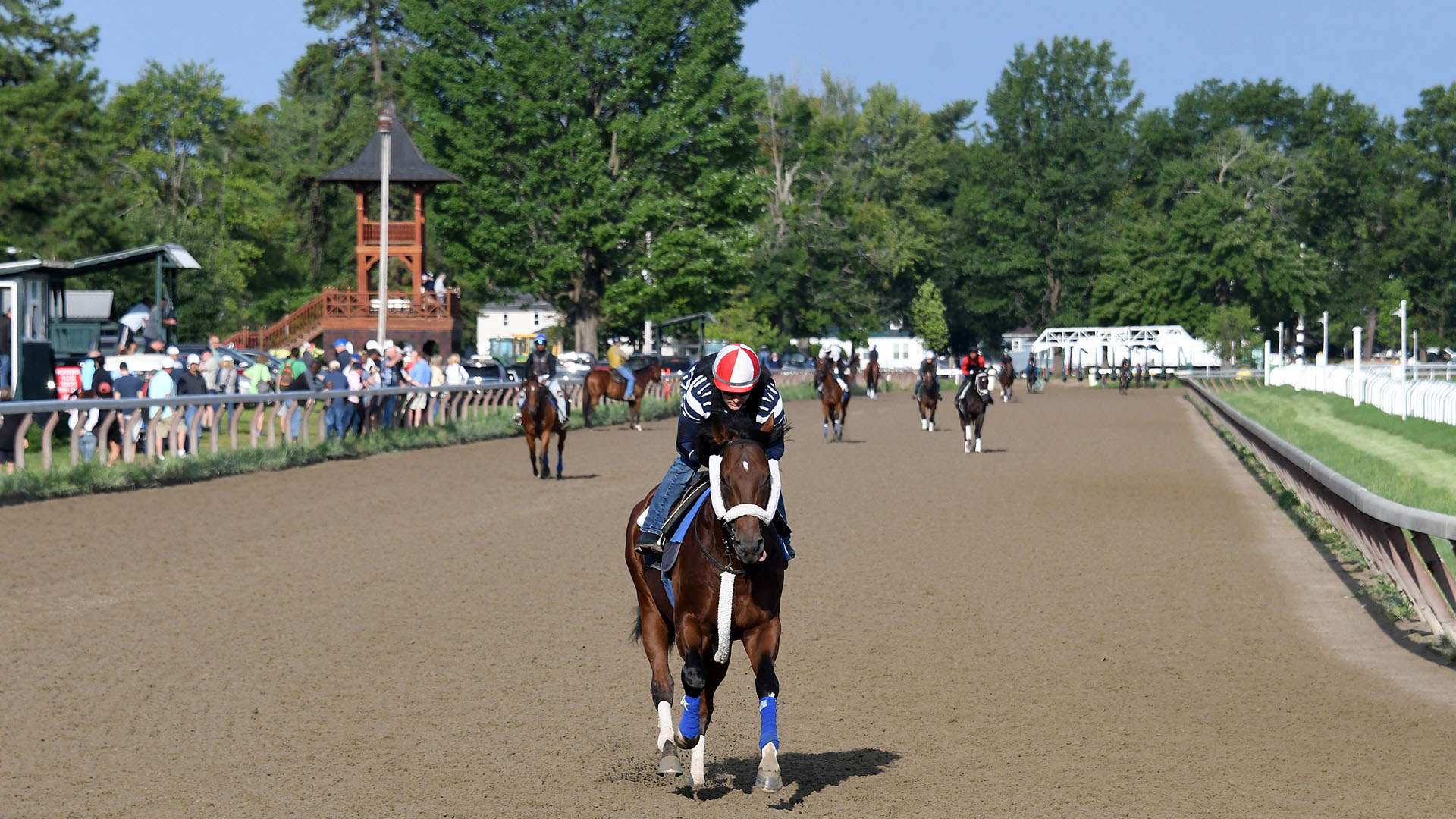 Weather Wiz galloping at Saratoga.