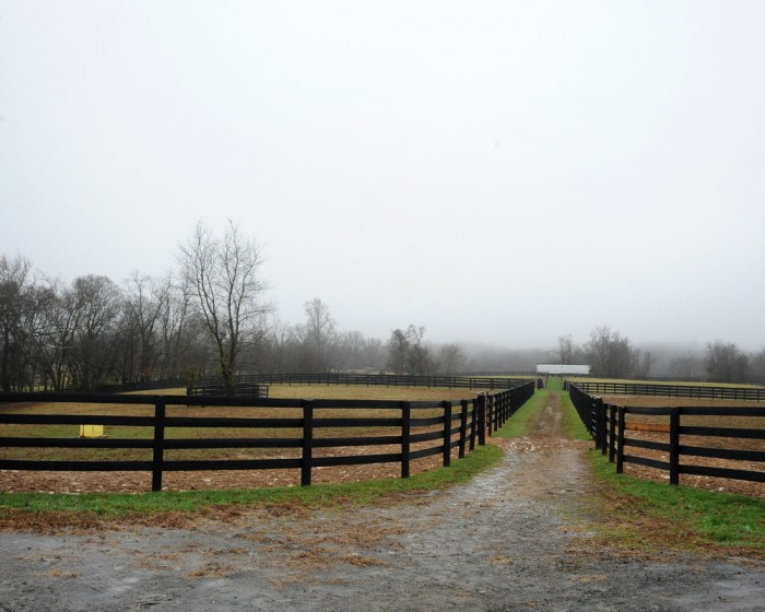 Gorgeous Centennial Farms in Middleburg, VA features plenty of space for turnout.