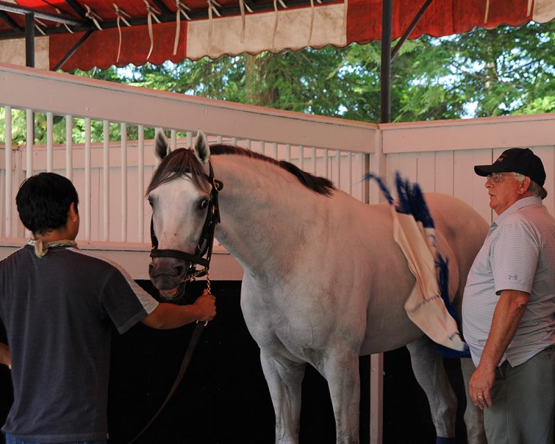 Juba schooling at Saratoga with Jimmy Jerkens.