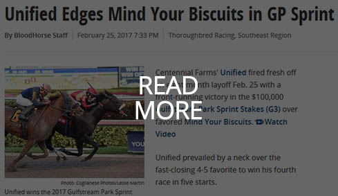 The Blood-Horse coverage of Unified's victory.