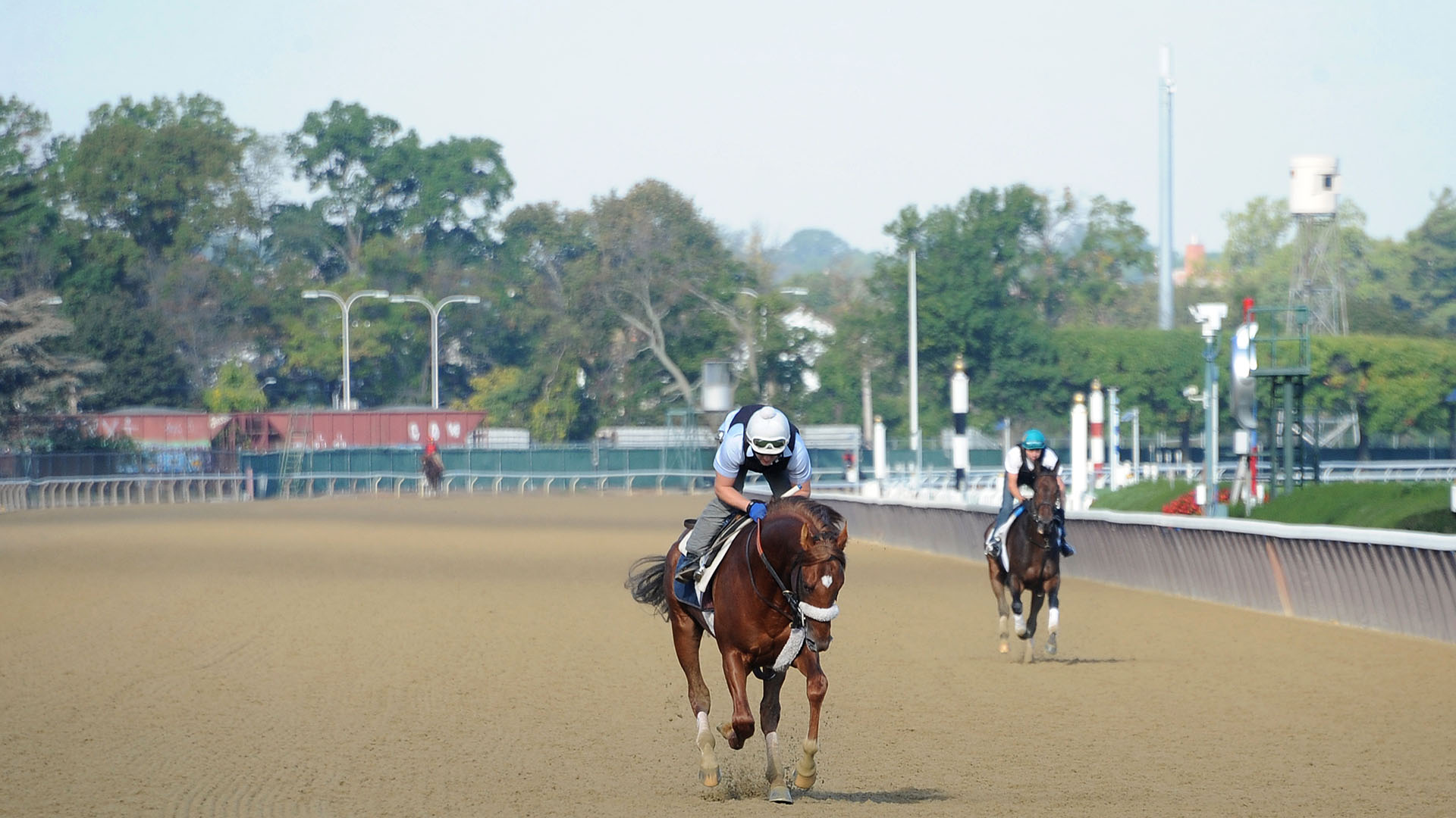 Emergent gallops at Belmont Park.