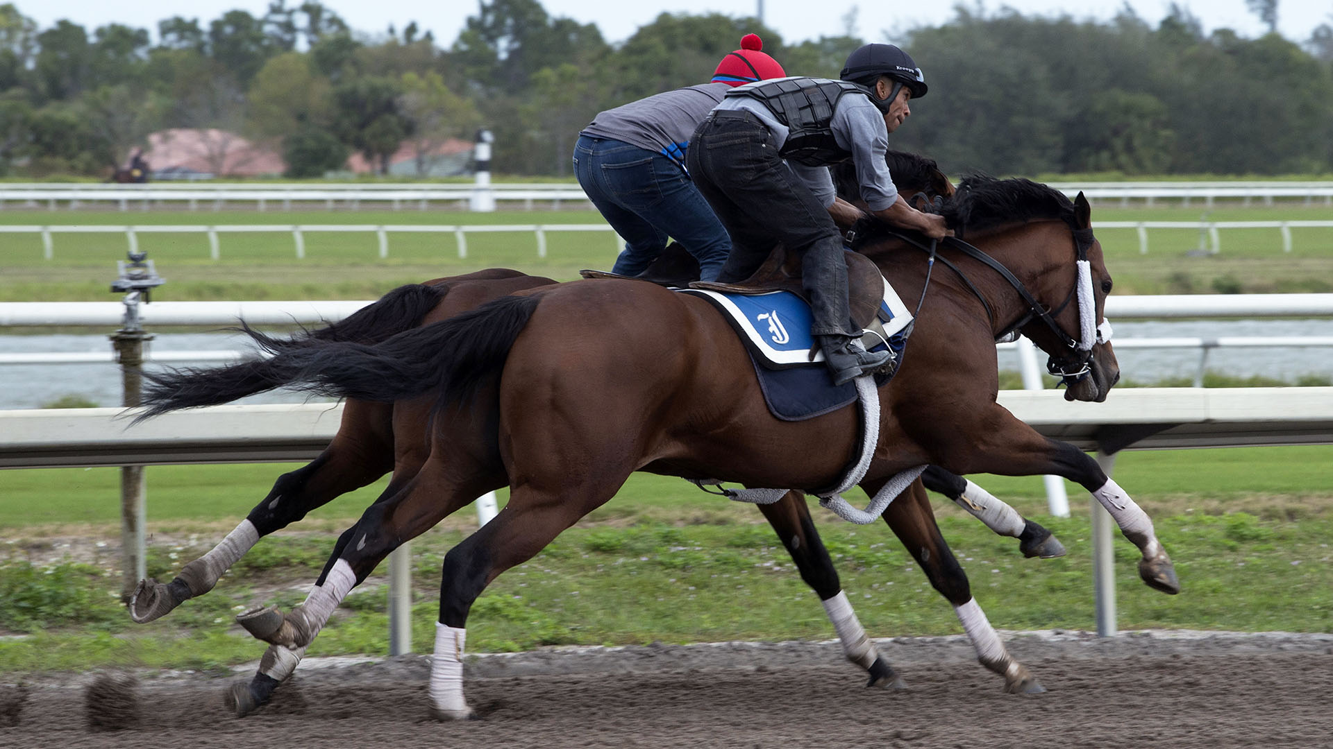 Weather Wiz breezes at Palm Meadows Thoroughbred Training Center in Boynton Beach, Florida.