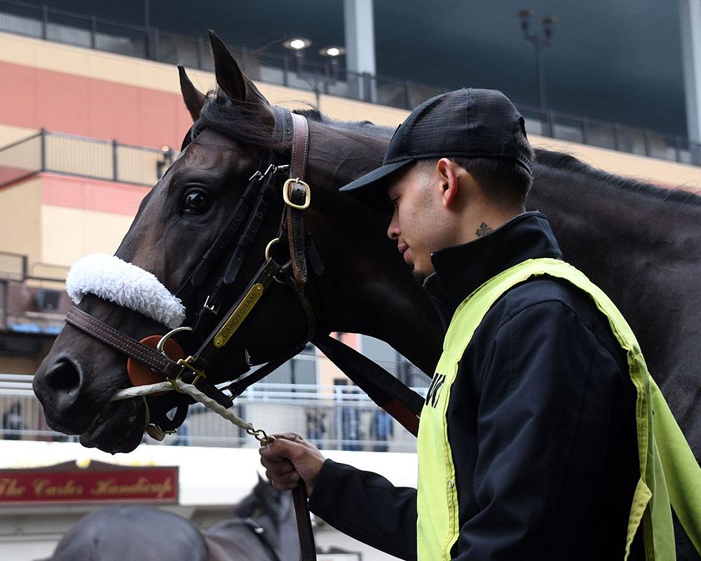 Candygram wins at Aqueduct for Centennial Farms thoroughbred racing partnership.
