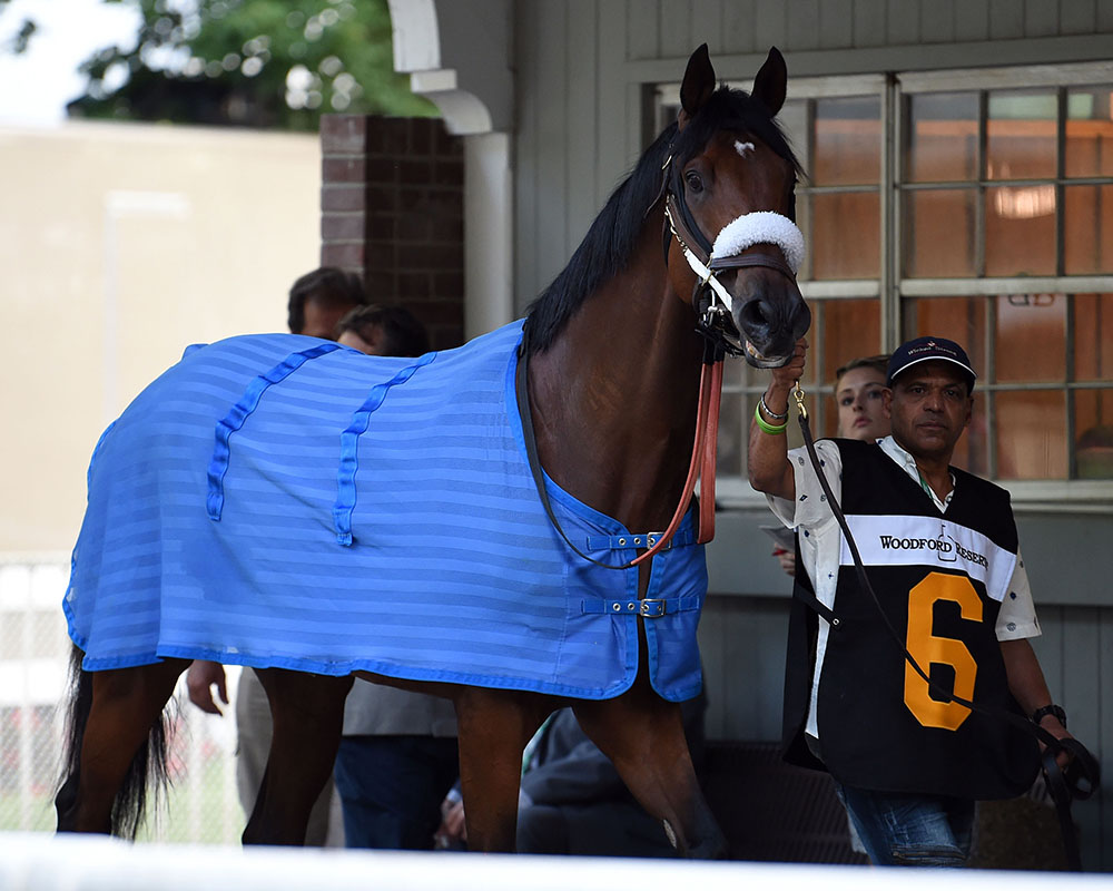 Rocketry finishes second in the prestigious G2 Woodford Reserve Brooklyn at Belmont Park for Centennial Farms thoroughbred racing partnership.