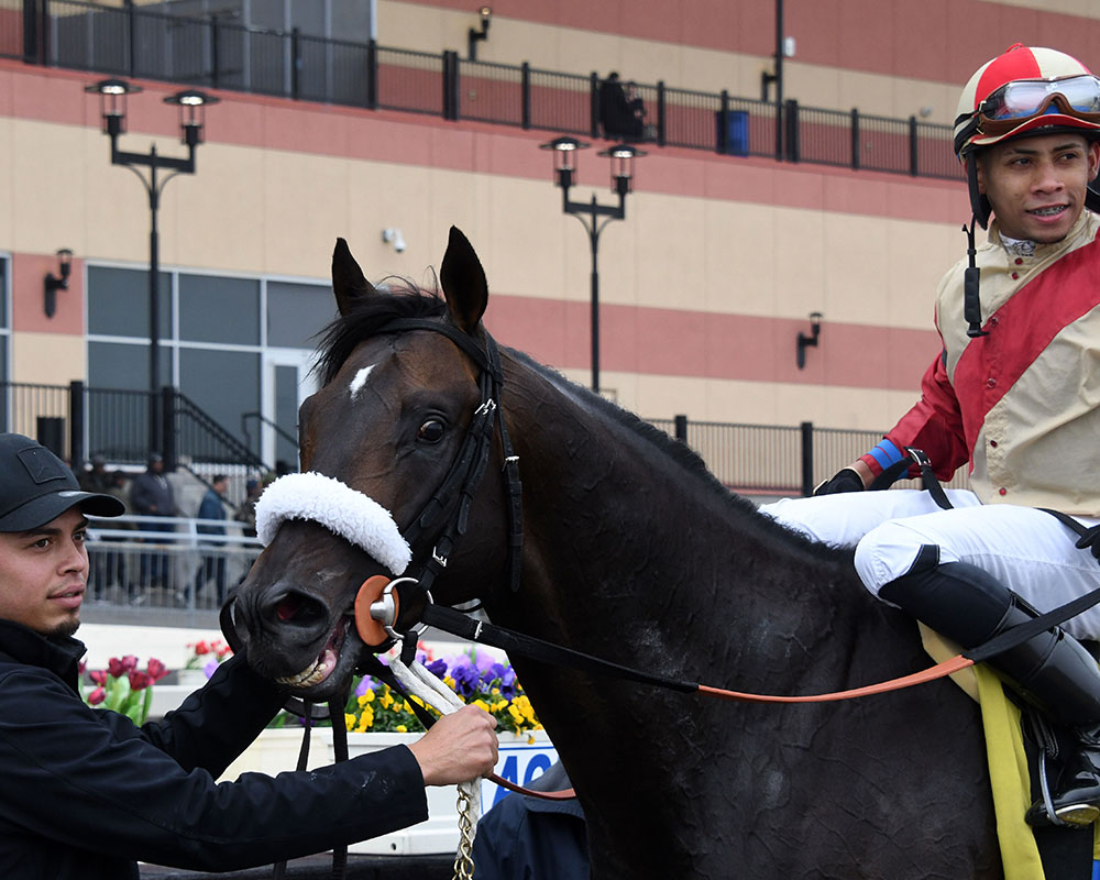 Candygram wins at Aqueduct for Centennial Farms thoroughbred racing partnership.