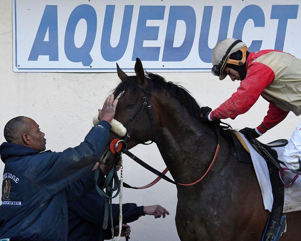 Preservationist wins at Aqueduct for Centennial Farms thoroughbred racing partnership.