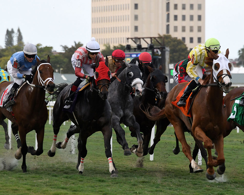 Illudere wins at Gulfstream Park for Centennial Farms thoroughbred racing partnership.