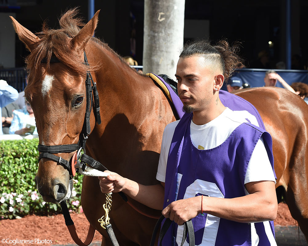 Life On Top breaks his maiden at Gulfstream Park.