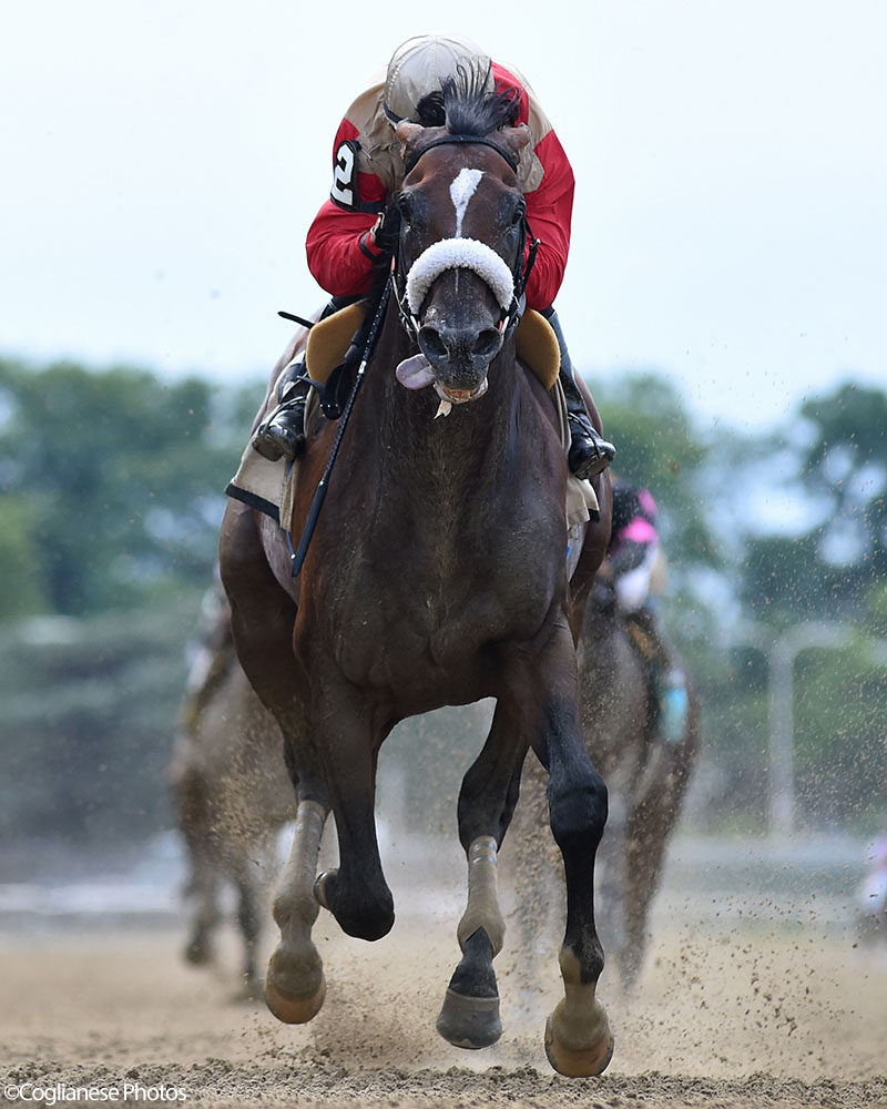 Preservationist wins the prestigious G2 Suburban at Belmont Park for Centennial Farms thoroughbred racing partnership.
