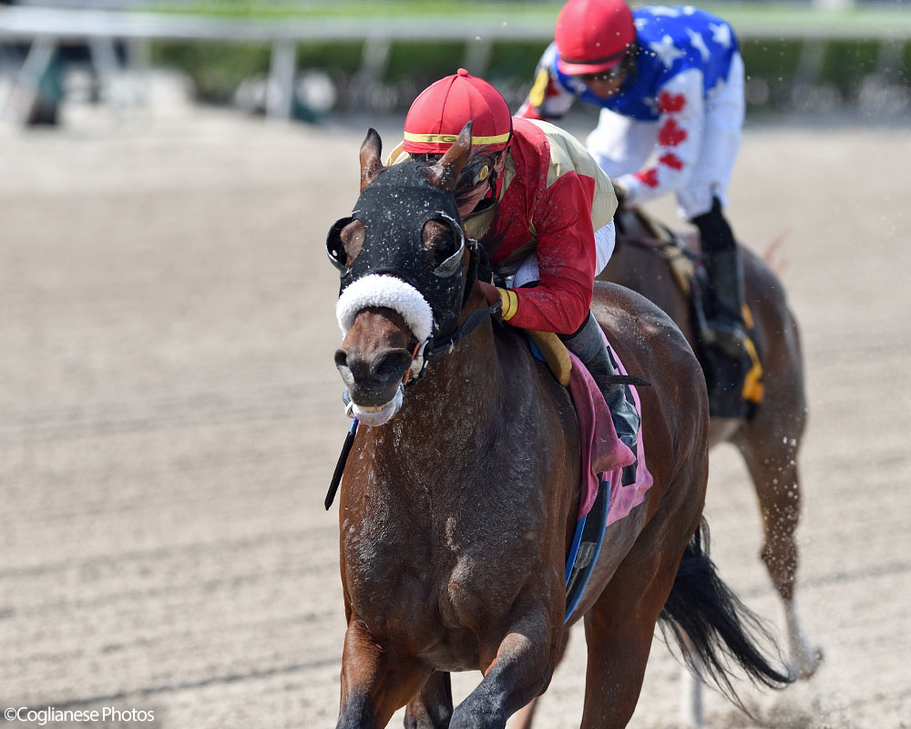 Mihos wins impressively at Gulfstream Park for Centennial Farms thoroughbred racing partnership.
