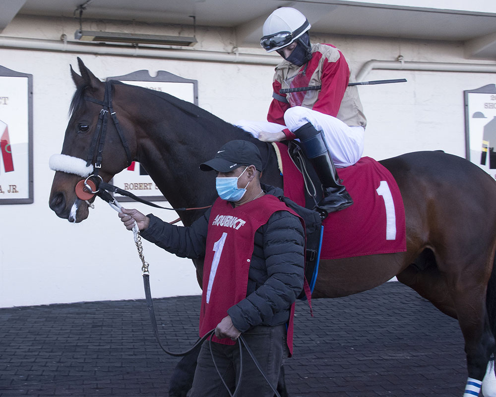 Mihos wins at Aqueduct on March 13.