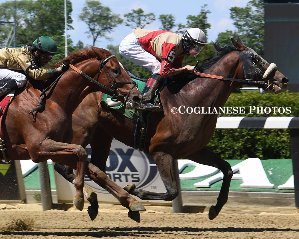 Royal Realm breaks his maiden at Belmont Park for members of his Centennial Farms thoroughbred racing partnership team.