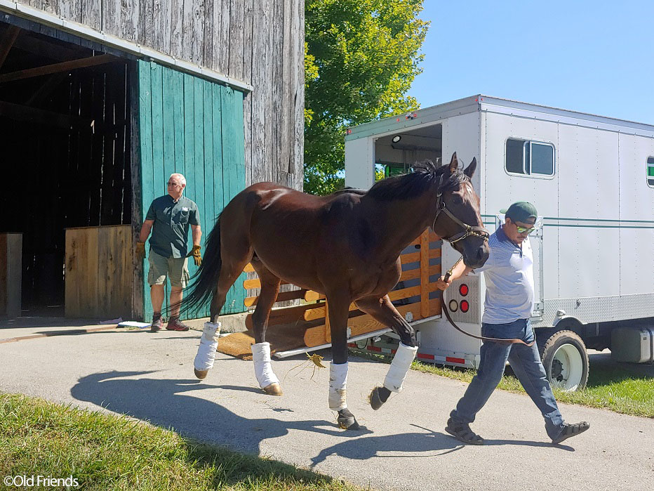 Multiple graded stakes winner and three-time track record setter Rocketry, a member of the Crescent LLC thoroughbred racing partnership, arrives at Old Friends in Georgetown, Kentucky.